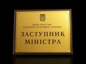 """Diplom """"Zastupnyk ministra"""""""