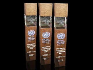 """Нагорода """"United Nations Ukraine"""""""